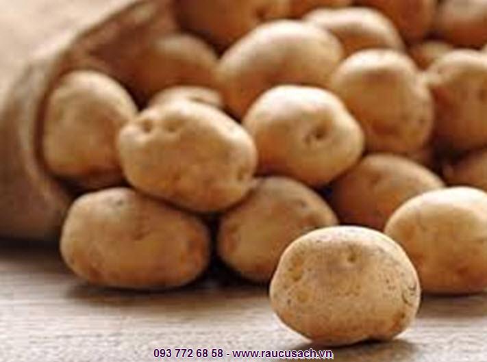 Chúng tôi tự hào là địa chỉ cung cấp khoai tây Đà lạt tươi ngon, chất lượng dành cho tất cả người tiêu dùng hiện nay
